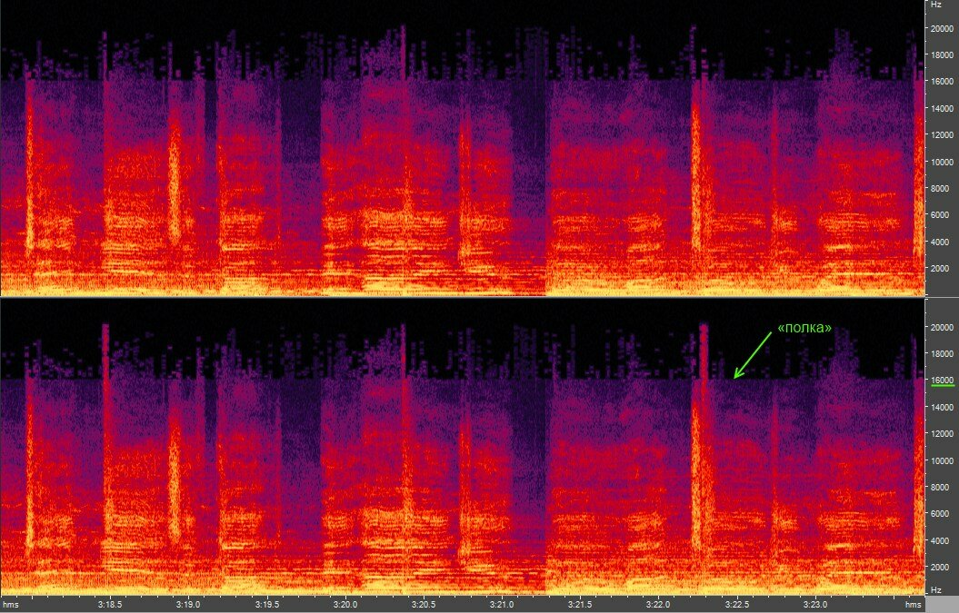 Adobe Audition: Spectrum zoomed