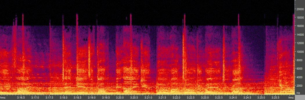 Спектрограмма LAME 0.99.5, VBR V2